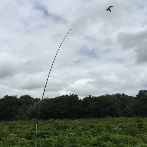 Hawk Bird Scarer with 10 meter Telescopic pole 20m/s