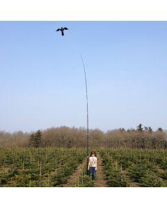 Hawk Bird Scarer with 7 meter Telescopic pole, 17 m/s wind.