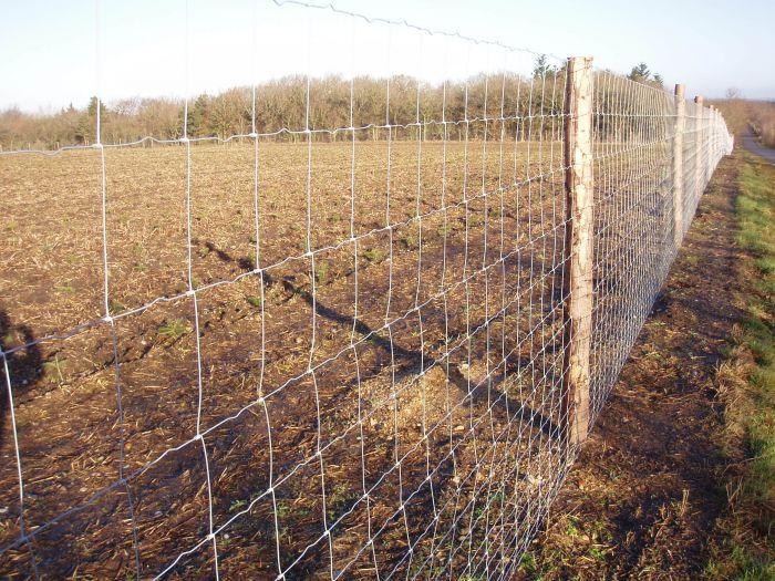 Wildlife Fence / Field Fence 1 roll (100m)