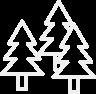 Timber compass 75cm